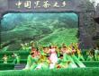 第二届中国·湖南(AG和记娱乐)黑茶文化节暨安化黑