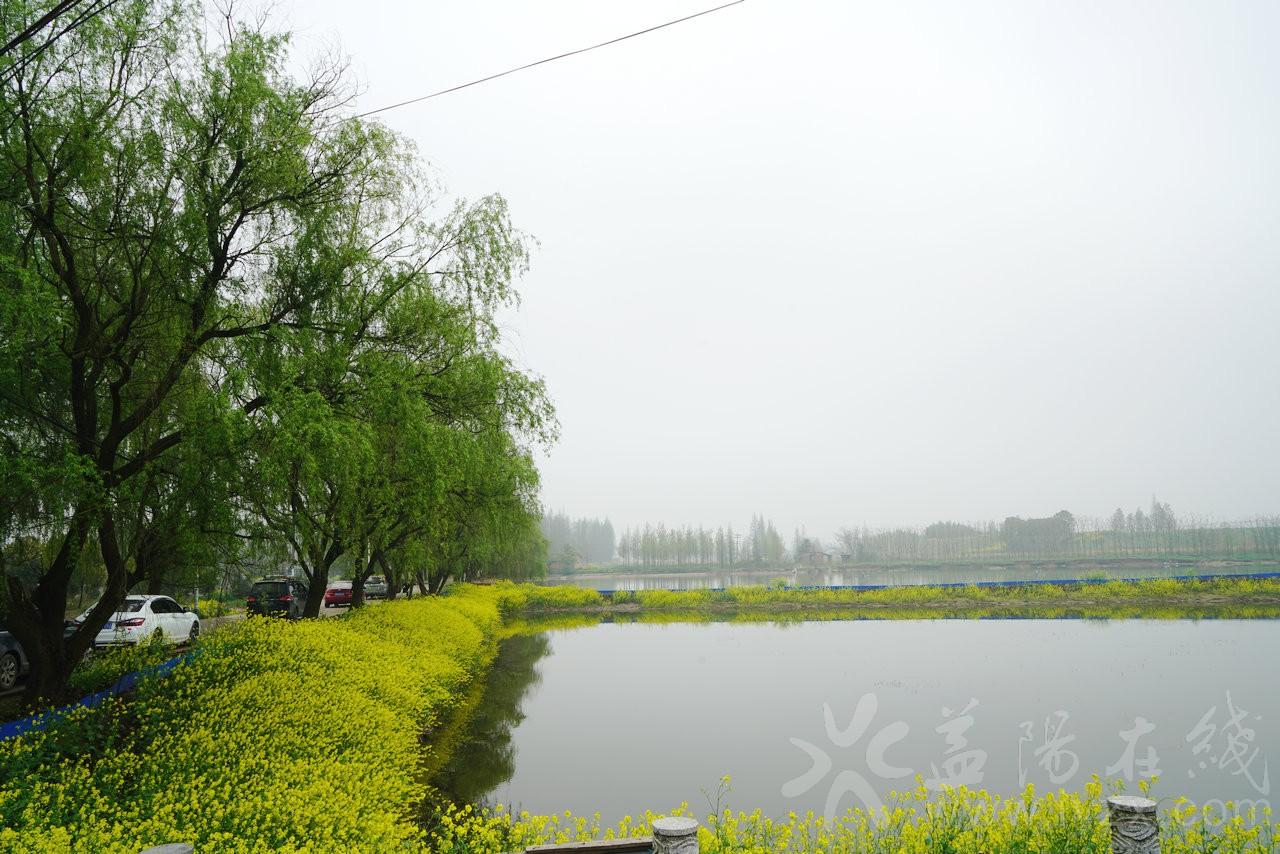 DSC04906_副本.JPG