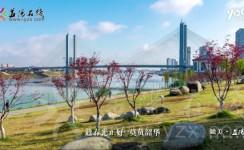 【瞰美·AG和记娱乐】花香四月,春满银城
