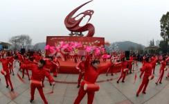 《欢乐中国年》