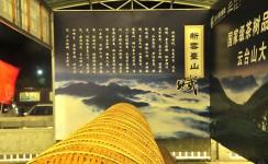 走近安化云台山茶场
