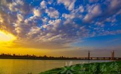 青龙洲大桥今日远眺