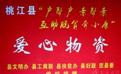 """桃江县开展""""户帮户亲帮亲,互助扶贫奔小康""""爱心捐赠活动"""