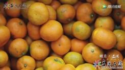 【瞰美·AG和记娱乐】橘子红了