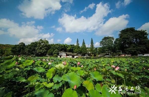 天朗气清山水明——我市创建湖南省环境空气质量达标城市综述