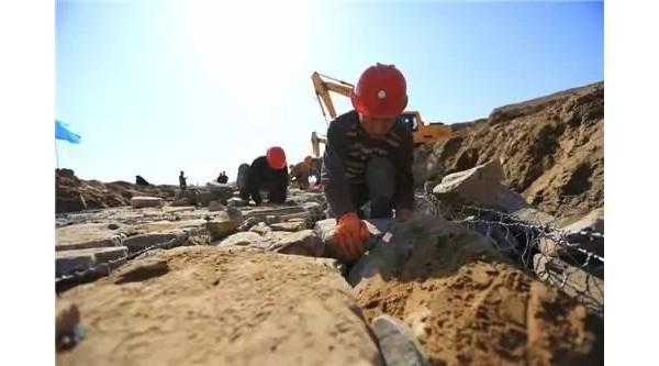 AG和记娱乐完成达标堤防建设195公里