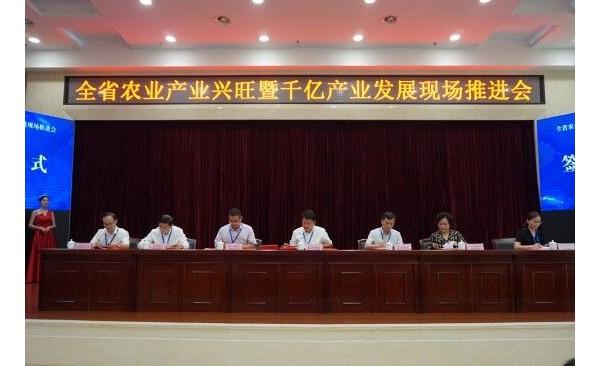 六家省级金融机构与南县签订县域经济发展合作协议