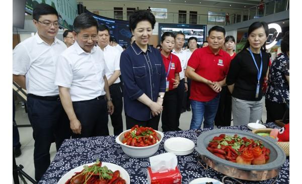 全省农业产业兴旺暨千亿产业发展现场推进会在南县举行