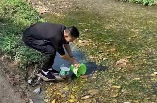 禁渔10年的龙溪村迎来一只鹰嘴龟